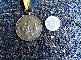 Médaille Marche Folkloriques E. S. M. CHATELINEAU 1981 WATERLOO  (Box 2) - Other