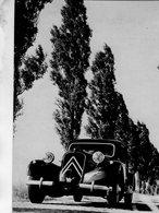Traction Avant  - Citroen 11  Berline Legere   1952  -  Carte Postale - Passenger Cars
