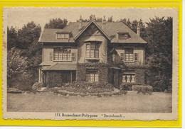 BRASSCHAAT-POLYGONE:  HOELEN- STERREBOSCH - Brasschaat