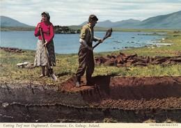 Postcard Cutting Turf Near Oughterard Connemara Co Galway Ireland My Ref  B23590 - Galway