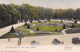 AK Potsdam - Sanssouci - Blumengarten Vor Dem Neuen Palais - 1905 (41019) - Potsdam