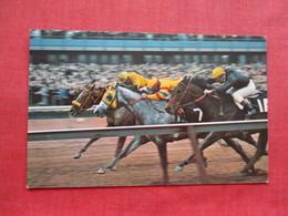 Aqueduct The Big A Horse Racing Track -- Long Island  NY    Ref 3328 - Long Island