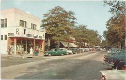 W2802 Bronxville - Palmer Avenue - Auto Cars Voitures / Non Viaggiata - NY - New York