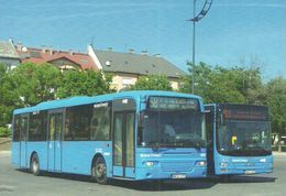 BUS * AUTOBUS * VOLVO AABENRAA * MAN A21 LION'S CITY * BKV * ETELE SQUARE * BUDAPEST * Top Card 0960 * Hungary - Bus & Autocars