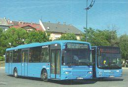 BUS * AUTOBUS * VOLVO AABENRAA * MAN A21 LION'S CITY * BKV * ETELE SQUARE * BUDAPEST * Top Card 0960 * Hungary - Autobús & Autocar