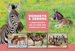 Liberia  2018 Fauna Donkeys And Zebras    I201901 - Liberia