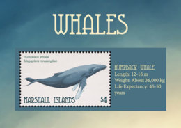 Marshall Islands   2018   Fauna  Whales  I201901 - Marshall