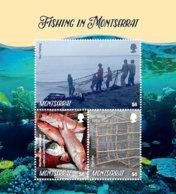 Montserrat  2018  Fauna Fishing In Montserrat  I201901 - Montserrat