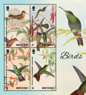 Montserrat    2018    Fauna Birds And Flower  I201901 - Montserrat
