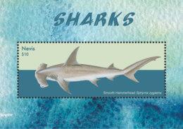 Nevis   2018  Fauna  Sharks  I201901 - St.Kitts And Nevis ( 1983-...)