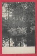 Ollignies - Sous-bois Du Pensionnat , étang - 1924 ( Voir Verso ) - Lessen