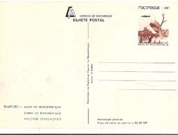 Mozambique ** & Postal Stationery, Moçambique Birds, Guarda-Rios, Halcyon Senegalensis, Maputo 1987 (1864) - Mozambico