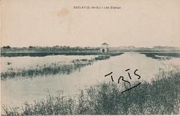 CP1 - 108 - SACLAY - LES ETANGS - Saclay