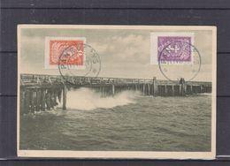 Lituanie - Carte Postale De 1923 - Oblit Panevezys - Exp Vers Dison - - Litauen