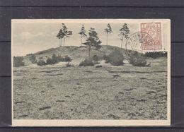 Lituanie - Carte Postale De 1929 - Oblit Panevezys - - Litauen