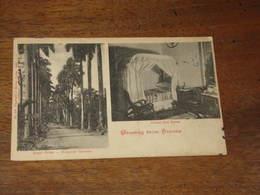 Greetings From HAVANA /CUBA  - Botanic Gardens & Cuban Bed Room - Cartoline