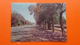 BULAWAYO,Rhodesia.Selborne Avenue - Zimbabwe