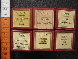 Lot FILM FIXE 35mm CORPS Peau Dents Muscles Hygiene - Bobines De Films: 35mm - 16mm - 9,5+8+S8mm