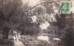 CPA  Nouvelle Zélande / New Zealand - Willow Walk - Maitai River Nelson - War Stamp - 1916 - Nouvelle-Zélande