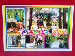 Manila Zoo - Filippijnen