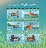 Palau 2018  Fauna Pacific  Waterfowl   I201901 - Palau