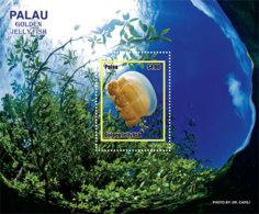 Palau 2019  Fauna Golden Jellyfish  I201901 - Palau
