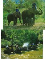 """3070e: 2 AKs Aus Thailand """"Dschungeltour Mit Elefanten"""", Ungelaufen - Elefanten"""