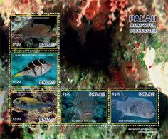 Palau 2019  Fauna Pufferfish  Fish  I201901 - Palau