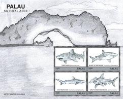 Palau 2019  Fauna Sharks At Natural Arch,fishes  I201901 - Palau