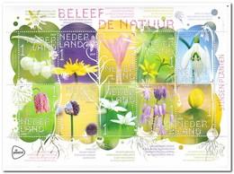 Nederland 2019, Postfris MNH, Nature, Flowers - 2013-... (Willem-Alexander)