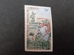 Afrique > Cameroun (1960-...) N° 115  PA ** - Cameroun (1960-...)