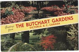 Victoria - The Butchart Gardens  - (B.C., Canada) - 1962 - Victoria