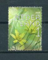 2019 Netherlands Flowers,fleurs,blümen,bosgeelster Used/gebruikt/oblitere - 2013-... (Willem-Alexander)