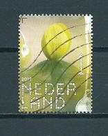 2019 Netherlands Flowers,fleurs,blümen,winterakoniet Used/gebruikt/oblitere - 2013-... (Willem-Alexander)