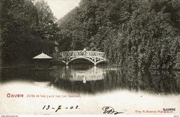 GAVERE - Kasteel - Château - Zicht In Het Park Van Het Kasteel - Gavere