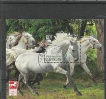 HR 2018-1345 HORSES LIPICANER, CROATIA HRVATSKA, S/S , Used - Croatie