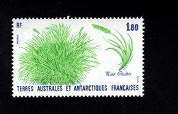 762538190 1987 SCOTT 126 POSTFRIS  MINT NEVER HINGED EINWANDFREI  (XX) FLORA POA COOKI - Terres Australes Et Antarctiques Françaises (TAAF)