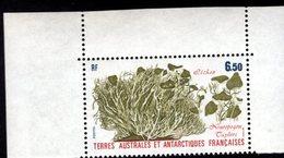 762538589 1987 SCOTT 127 POSTFRIS  MINT NEVER HINGED EINWANDFREI  (XX) FLORA LICHEN NEUROPOGON TAYLORI - Terres Australes Et Antarctiques Françaises (TAAF)