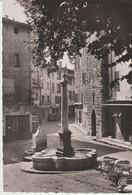 C.P. - PHOTO - VENCE - FONTAINE DU XVI° SIÈCLE - 60 - C. A. P. - Vence