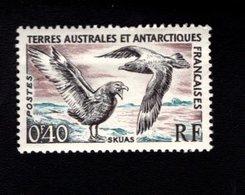 762552293 1959 SCOTT 13 POSTFRIS  MINT NEVER HINGED EINWANDFREI  (XX) SKUA - BIRDS - Terres Australes Et Antarctiques Françaises (TAAF)