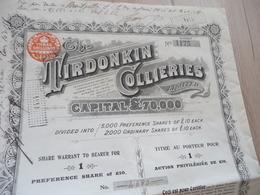 Action The Tirdonkin Collieries Mines ? 1904 - Mines