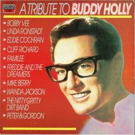 * LP *  A Tribute To Buddy Holly - Linda Ronstadt, Cliff Richard, Eddie Cochran, The Nitty Gritty Dirt Band A.o. - Hit-Compilations
