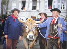 (83)  BARJOLS  FÊTE DE LA SAINT MARCEL La Parade Du Bœuf - Barjols