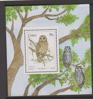 South Africa-Ciskei Scott 166a 1991 Owl, Miniature Sheet, Mint Never Hinged - Ciskei