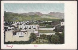 CPA - Espana / Spain - ISLAS CANARIAS, Tenerife, Guimar - Tenerife