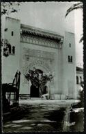 Ref 1292 - Real Photo Postcard - Parc De Galland Le Musee Alger - Algeria Ex France Colony - Algiers