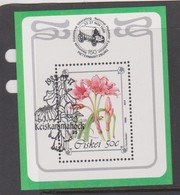 South Africa-Ciskei Scott 171a 1988 Flower, Miniature Sheet, Used - Ciskei