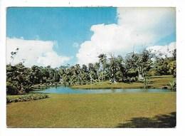 Mauritius - Viaggiata - Postcards