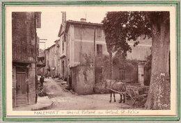 CPA - MALEMORT (84) - Thème : Arbre - Aspect Du Grand Platane Au Portail St-Félix Dans Les Années 30 - Autres Communes