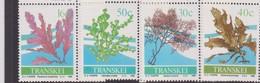South Africa-Transkei SG 213-216 1988 Seaweeds, Mint Never Hinged - Transkei